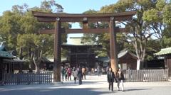 Japan Tokyo Torii Stock Footage