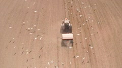 Tractor harrowing, seagulls flying around, aerial shot 2,7K Stock Footage