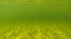 Underwater horizon Stock Footage