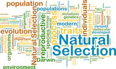 Natural selection wordcloud concept illustration Stock Illustration