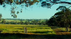 View Through A Gate Into A Field On A Farm Stock Footage