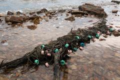 Forgotten fishing nets at a shallow shore Stock Photos