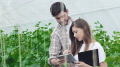 Guy shows a girl on the tablet example of healthy plants Stock Footage