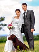 Bride and groom summer outdoor Stock Photos