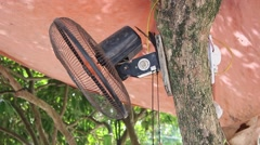 Electric fans blowing cool wind, shade tree Stock Footage