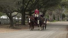 Colonial Williamsburg Virginia historic horse carriage tourist ride 4K 029 Stock Footage