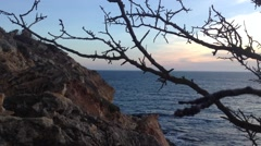 Crimea Russia Sevastopol Fiolent - Black sea, rocks , tree, moving camera 7 Stock Footage