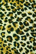 Leopard leather pattern texture background - stock photo