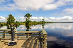Observation Deck on Lake Drummond - stock photo