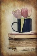 Still life image of Spring flowers with vintage texture filter effect applied Stock Photos