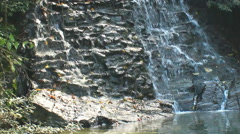 Pure fresh water waterfall in forest Stock Footage
