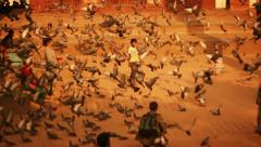 Children play with pigeons at Kathmandu Durbar Square, Nepal Stock Footage