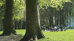 Wood ,Picnic , Sunny day in the park,people relaxing Stock Footage