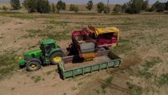 Tractor Dumps   potato to a big Container Stock Footage