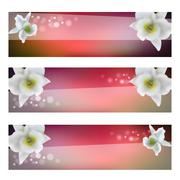 flower header with blossom orchid - stock illustration