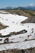 Tourists traverse mountain river on snowfield. Far East, Kamchatka Peninsula - stock photo
