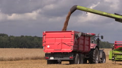 Agriculture machine load harvested grain into truck trailer Stock Footage