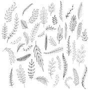 Set of leaves - stock illustration