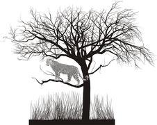 Jaguar in a tree Stock Illustration