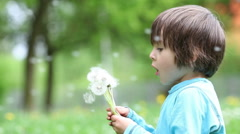 Beautiful little boy, blowing dandelions in the park Stock Footage