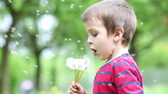 Beautiful little boy, blowing dandelions in the park Stock Footage