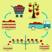 Process of tomato Stock Illustration