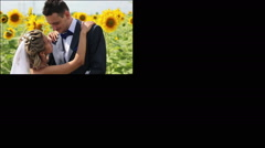 couple at sunflower field- multiscreen - stock footage