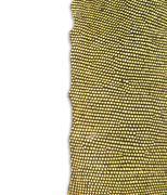 textured of iguana skin - stock photo
