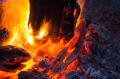Bright flame of the burning bonfire Stock Photos