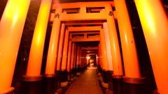 4K POV Hyperlapse of Torii Gates at Fushimi Inari in Kyoto, Japan Stock Footage