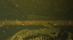 Ironwork in a shipwreck underwater Stock Footage