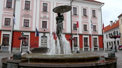 A statue fountain in front of the town hall in Estonia Stock Footage