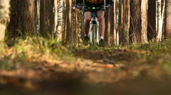 Biking in the forest - stock footage