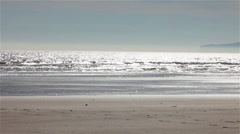 Family silhouette on the beach Stock Footage