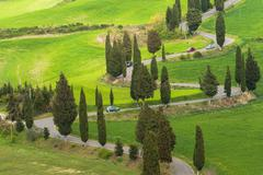Tuscany twisted road with cypresses Stock Photos