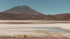 Lagoon in Andes of Bolivia with falmingos Stock Footage
