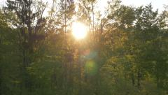 Aerial - Sun breaking through the trees Stock Footage