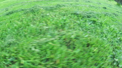 Beveled lawn - stock footage