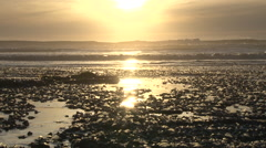 Sunset Waves and Ocean Jellyfish Stock Footage