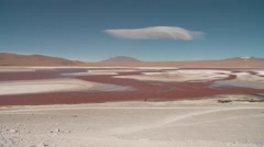 Laguna Colorada (Red Lagoon), Andes of Bolivia Stock Footage