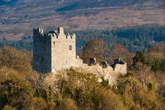 Ross castle in the Ring of Kerry - stock photo