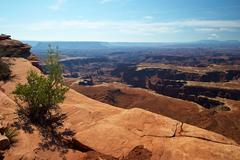 Red Desert, Canyonlands National Park, Utah, USA Stock Photos