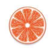 Grapefruit slice - stock illustration