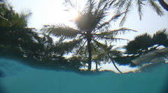 View from underwater of pool on palm trees over water - stock footage