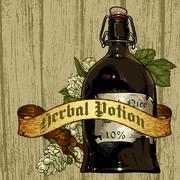 natural herbs - stock illustration