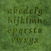 abc alphabet small letter create by tree with grass background - stock illustration