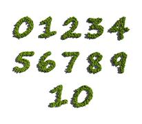 Stock Illustration of numbers create by tree white background