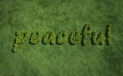Peaceful create by tree with grass background Stock Illustration