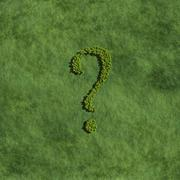 Stock Illustration of question mark create by tree with grass background