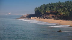 The seashore with palm trees. India. Kerala. Stock Footage